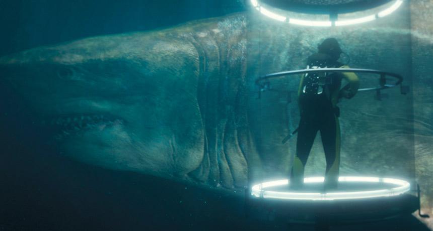 Escala real do tubarão Megalodon revelada.