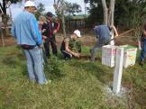 Alunos plantando mudas de árvores nas dependências da escola.