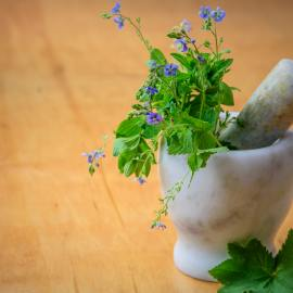 Herb Garden: Your Ultimate Guide