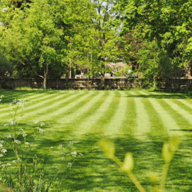 Questions About Your Lawn in Lancaster PA Answered