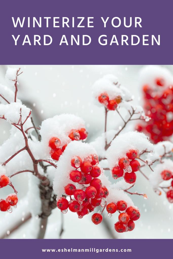 Winter Preparation for Your Garden