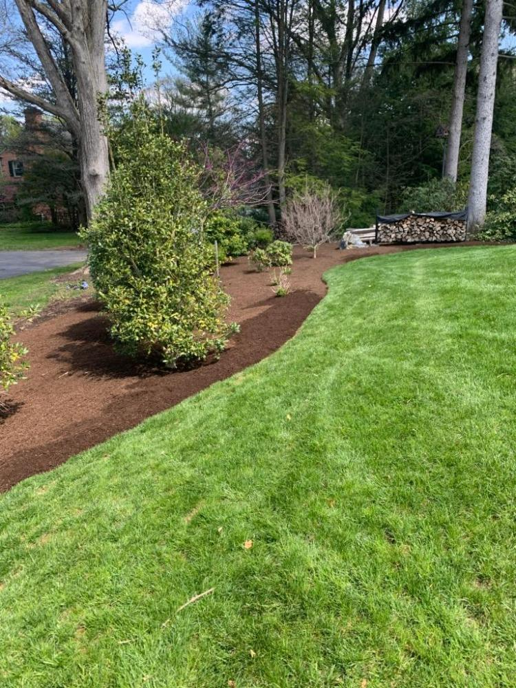 Newly Edged Lawn in Lancaster