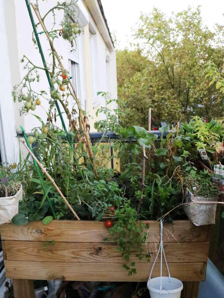 choisir le bon pot : bac potager en bois de Mélèze pour cultiver un potager en carré sur balcon. | Échoppe Végétale #jardinagefacile #balcon #potagerencarré #potagerurbain