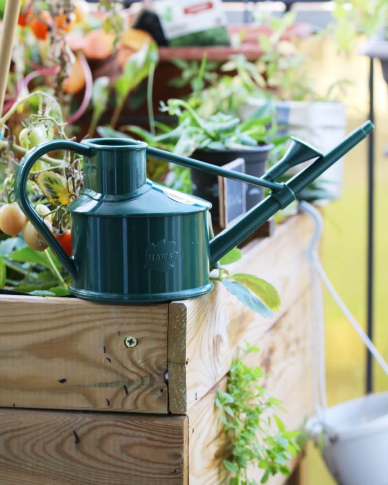 arrosoir plantes d'intérieur en plastique recyclable - vert sapin, vert foncé posé sur un bac potager en bois | l'échoppe végétale