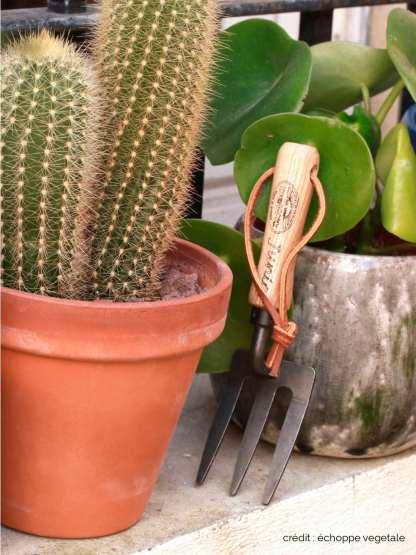petit râteau écolo pour jardiner avec les enfants et pilea et cactus dans un pot en terre cuite sur rebord e fenêtre, mini fourche de jardin à main fabriqué en hollande en frêne et fer forgé, bois FSC, issu de foret gérée durablement - outils de jardin enfant - L'échoppe végétale