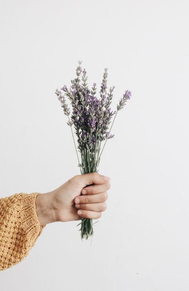 box jardinage bio été : produit pour les mains à la lavande