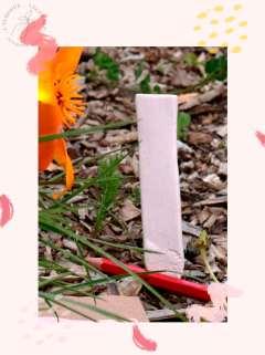 coffret cadeau fête des mères écolo, box jardinage bio fête des mères : graines bios et reproductibles de fleurs comestibles - marche plante fait main en céramique