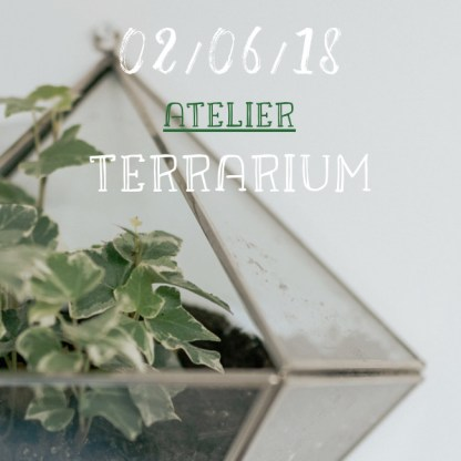 atelier terrarium au chateau Malmaison de Rueil en juin 2018