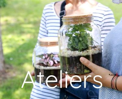atelier jardin, potager, terrarium, jardinier débutant en ville