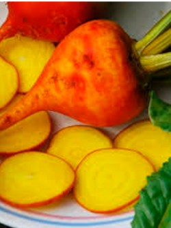 sachet de graines bio et reproductibles de betterave golden - échoppe végétale