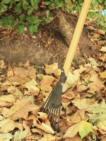 rateau à gazon et feuille dewit, bois et fer forgé