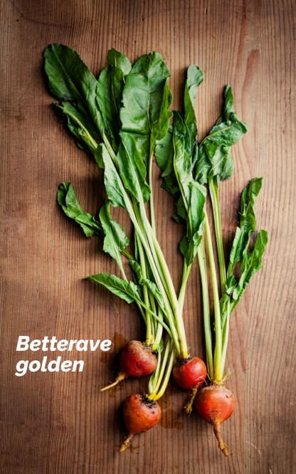 betterave golden dans la box paparadis pour la fête des pères - échoppe végétale