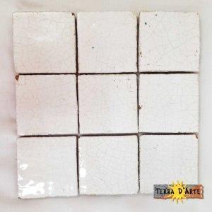 Mattonelle fondo bianco 10x10 - TERRA D'ARTE
