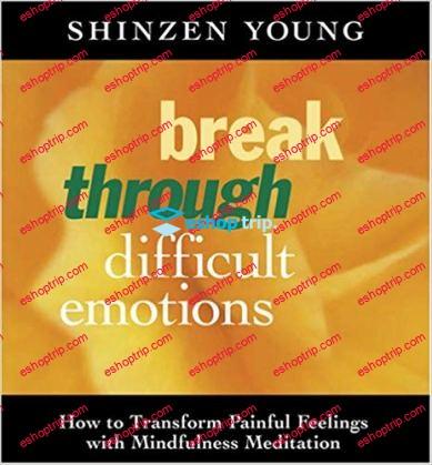 Shinzen Young – Break Through Difficult Emotions