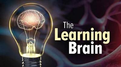 TTC Video The Learning Brain