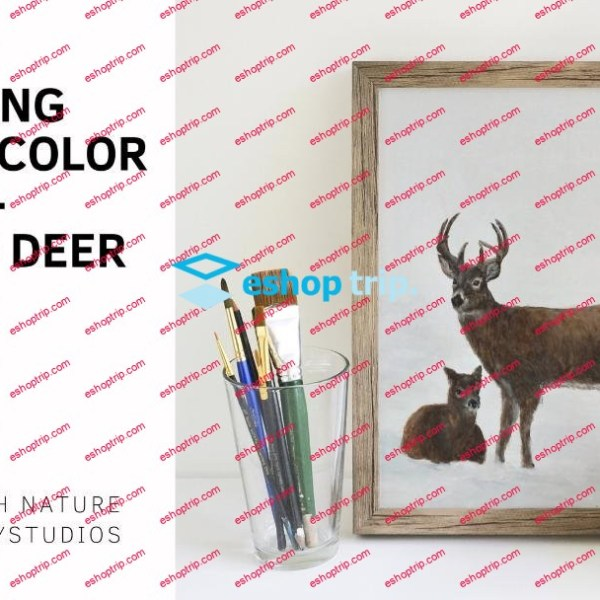 How to Paint a Winter White tailed Deer Larger Scale Watercolor Painting