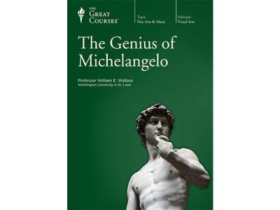 TTC Video Genius of Michelangelo