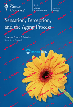 TTC Video Sensation Perception and the Aging Process