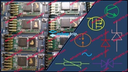 Electronic Protection Devices and Circuits