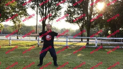 Tai Chi Standing Qi Gong Relaxation of Mind and Body
