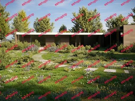 Maxtree Plant Models Vol. 51
