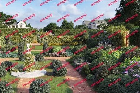 Maxtree Plant Models Vol. 77