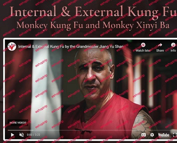 Warrior Neigong Internal External Kung Fu