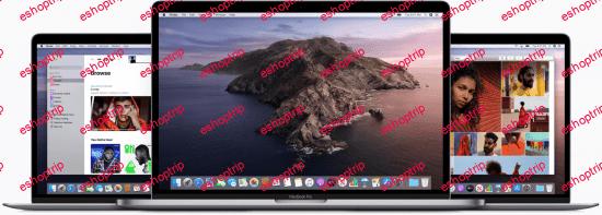 macOS Catalina 10.15.6 19G73 Multilanguage