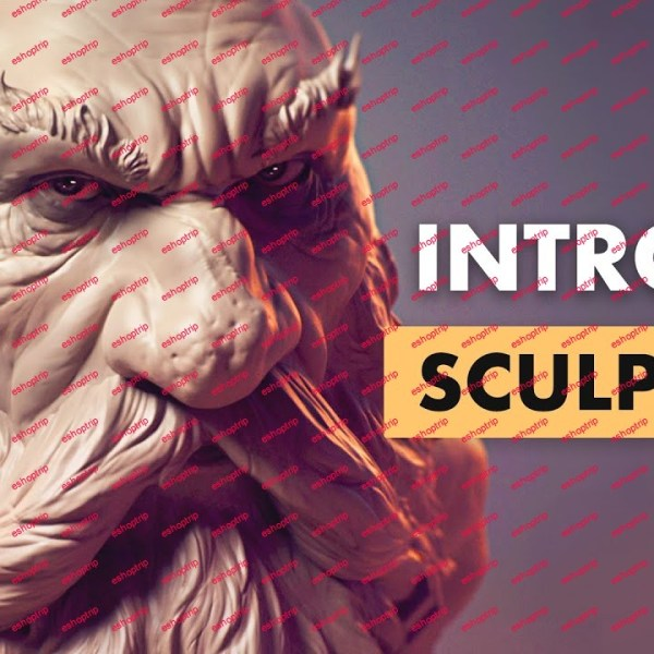 FlippedNormals Introduction to Sculpting