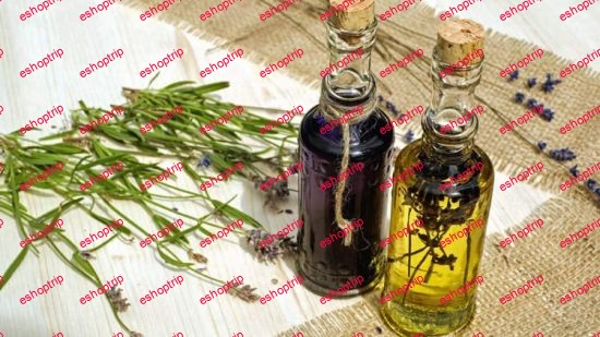 Herbalism Make Your Own Tinctures Tonics and Teas