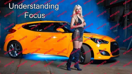 Understanding Focus A Critical Aspect of Great Imagery