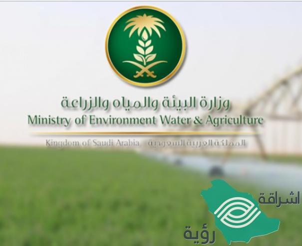 """""""وزارة البيئة"""" تبدأ بتغريم مخالفي ضوابط زراعة الأعلاف"""