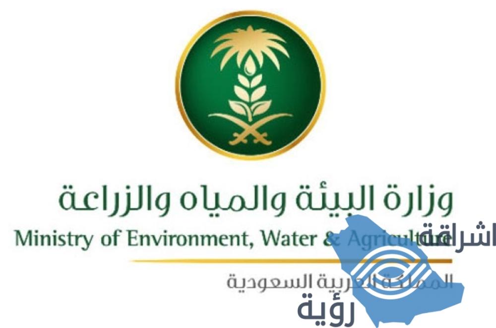 """""""البيئة"""" تشارك العالم في حماية الطيور المهاجرة من التلوث البلاستيكي"""