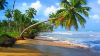 Permalink to Great Beach Wallpaper Photos