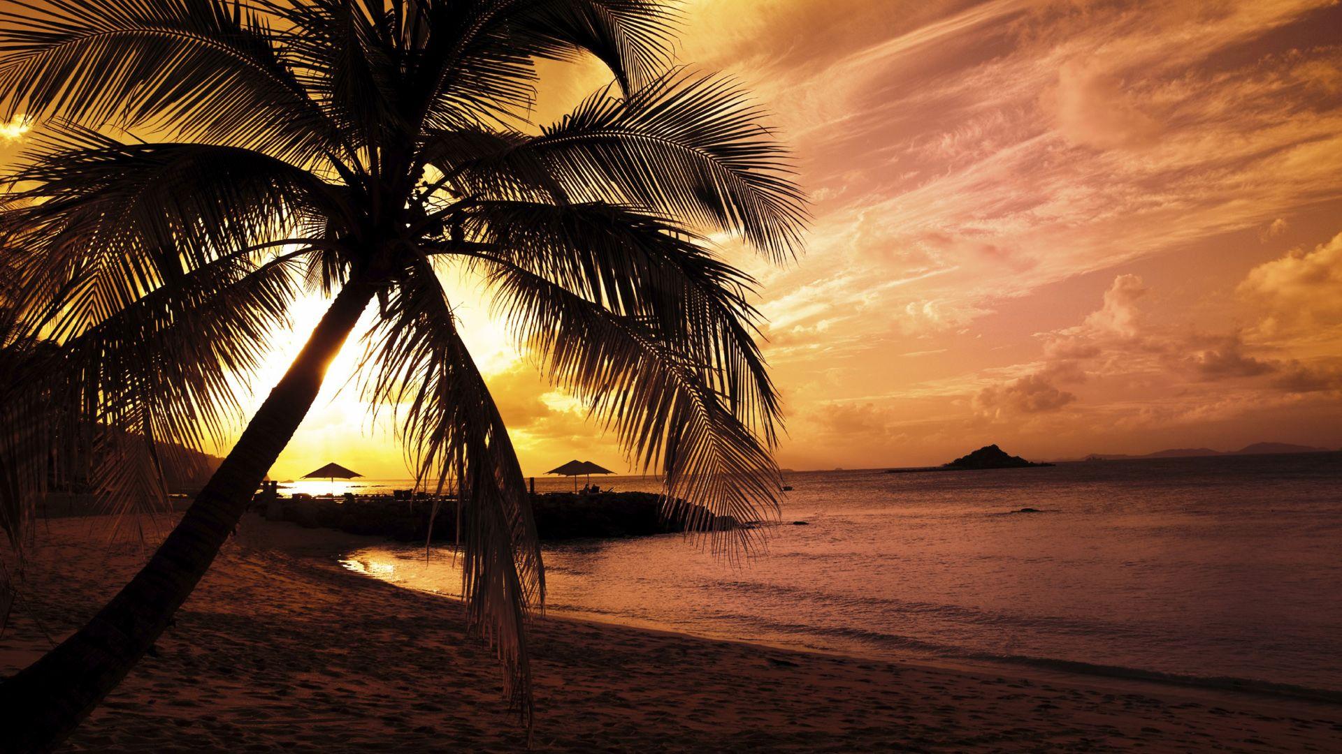 hawaii beach night wallpaper   1920x1080   #35145