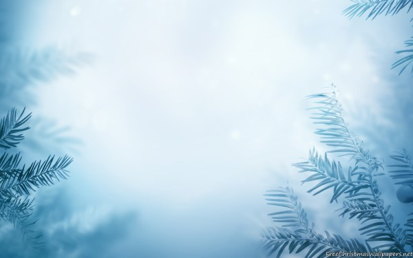 Winter Background wallpaper 1920x1200 81016