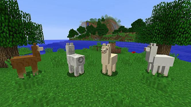 How to Tame Llamas in Minecraft