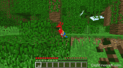 How to Tame a Parrot in Minecraft