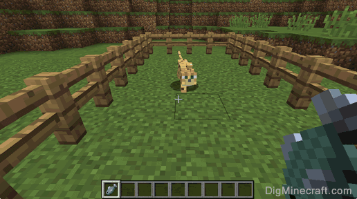 Tame an Ocelot in Minecraft