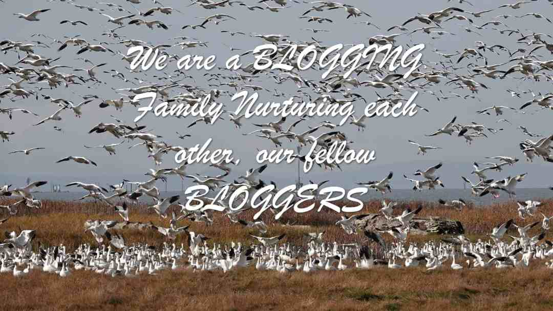 We are a BLOGGING Family Nurturing each other, our fellow BLOGGERS