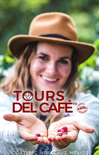 Tours del Café by Viajes Excel