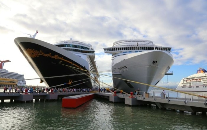 Libre de coronavirus el crucero Encore alega Puertos