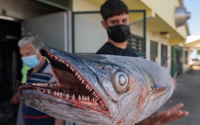 Inicia entrega de incentivo a pescadores