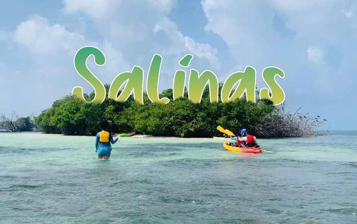 Escapadita por el Sur: Salinas, Cuna del Mojo Isleño