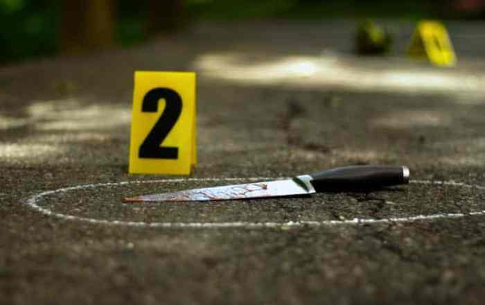 En libertad bajo fianza un padre y su hijo acusados de tentativa de asesinato