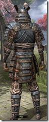 Akaviri Iron - Male Back