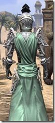 Apostle Homespun - Male Robe Close Back