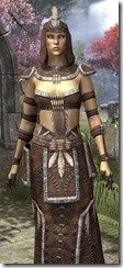 Argonian Homespun Robe - Female Close Front
