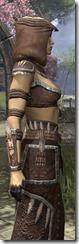 Argonian Homespun Robe - Female Close Side