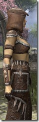 Argonian Homespun Robe - Female Close Side